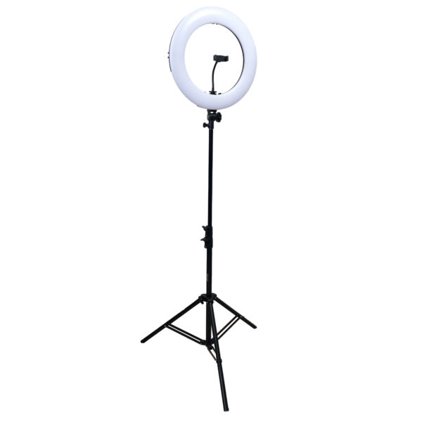 Dracast Halo Plus Series LED180 Bicolor Ring light and Light Stand Kit